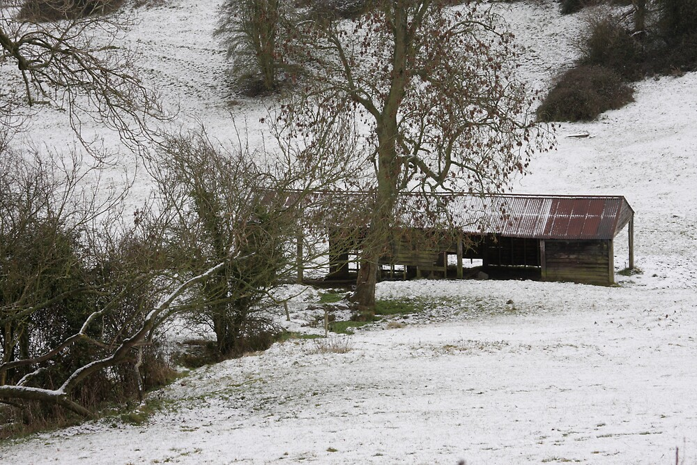 Barn in the Snow by Judy Dean