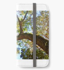 The Tree iPhone Wallet/Case/Skin