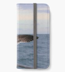 Looking To The Horizon iPhone Wallet/Case/Skin