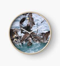Pelicans! Clock