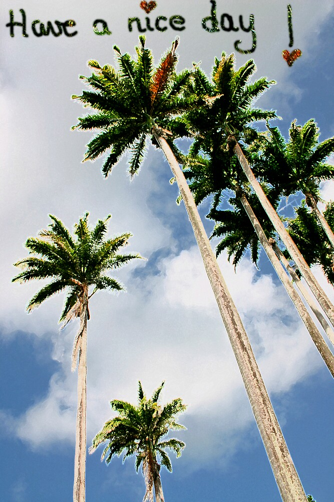 nice day palm trees by Sol Whiteley