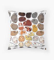Guinea Pig Gradient Throw Pillow