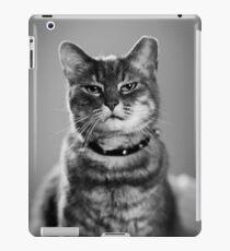 Tough Cat iPad Case/Skin