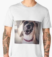 Cool Dog Face Men's Premium T-Shirt