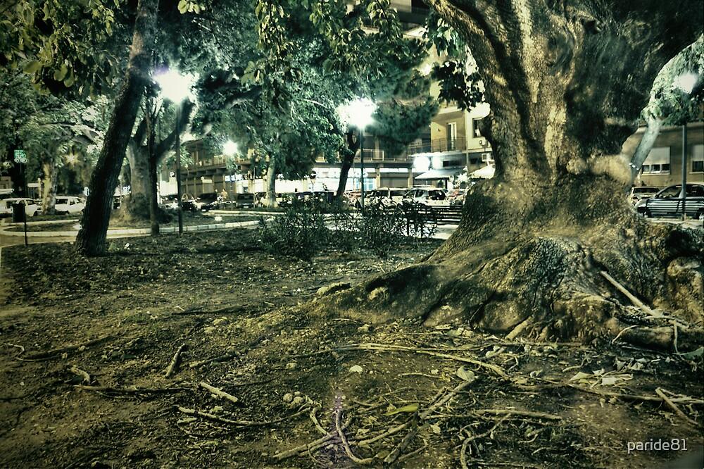 vecchio albero by paride81