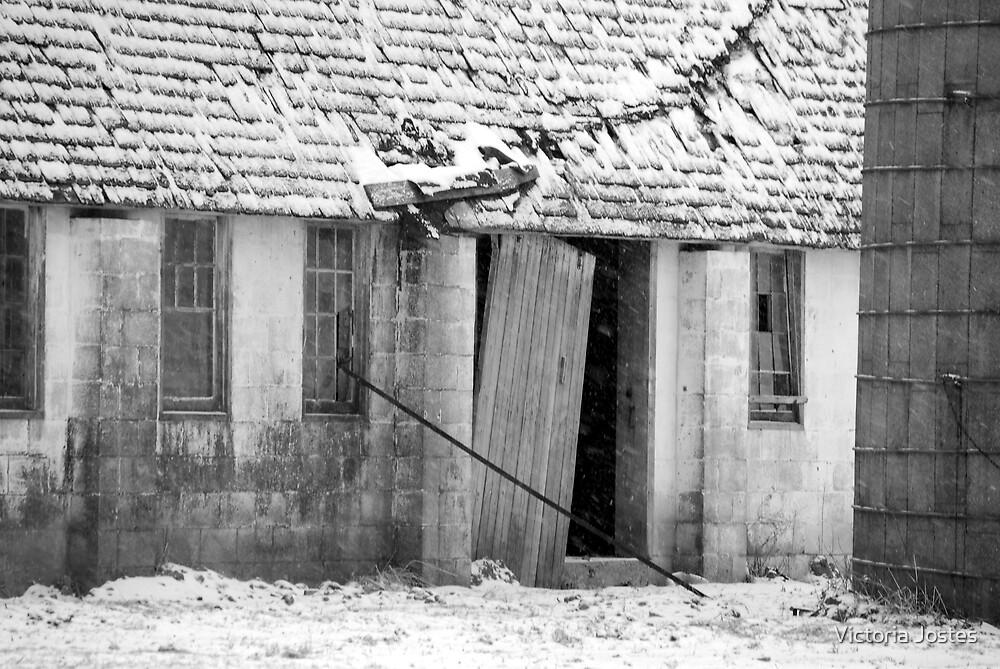 The Side Door by Victoria Jostes