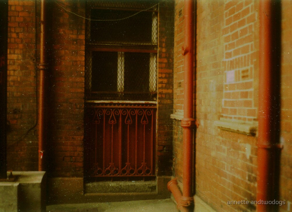 courtyard by annette andtwodogs