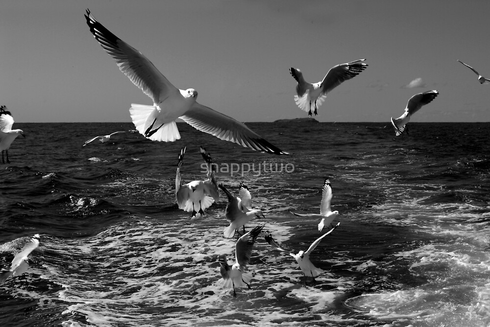 Lunchtime rush hour by snappytwo