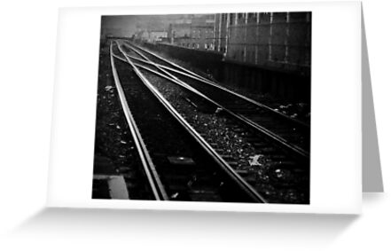 tracks by annette andtwodogs