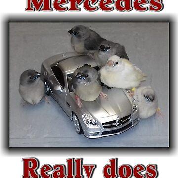 Mercedes pulls the birds by angela-mcintyre