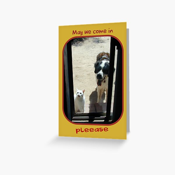 May we come in, PLEEASE Greeting Card