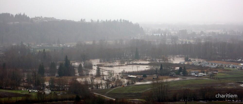 Washingotn State Flood by charitiem