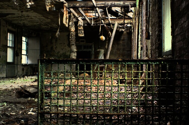 Decay by Michael Gatch