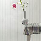 balanced by Joana Kruse