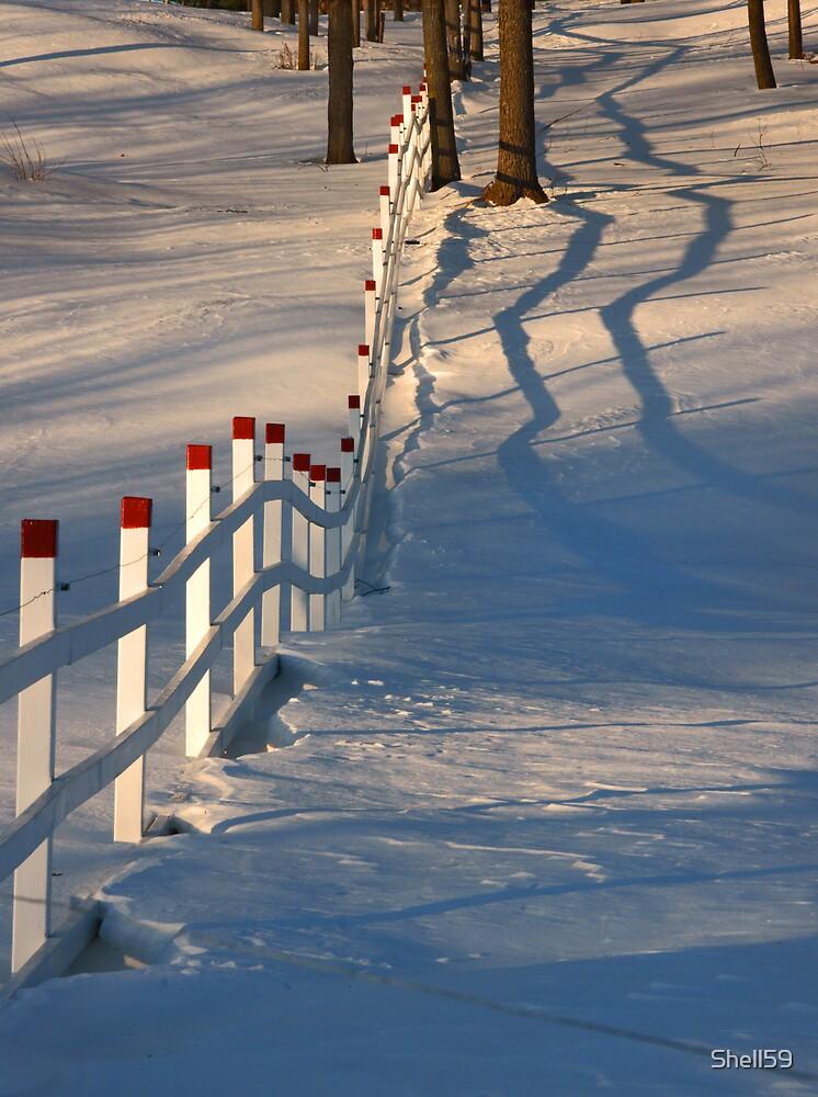 Fences V by Shell59