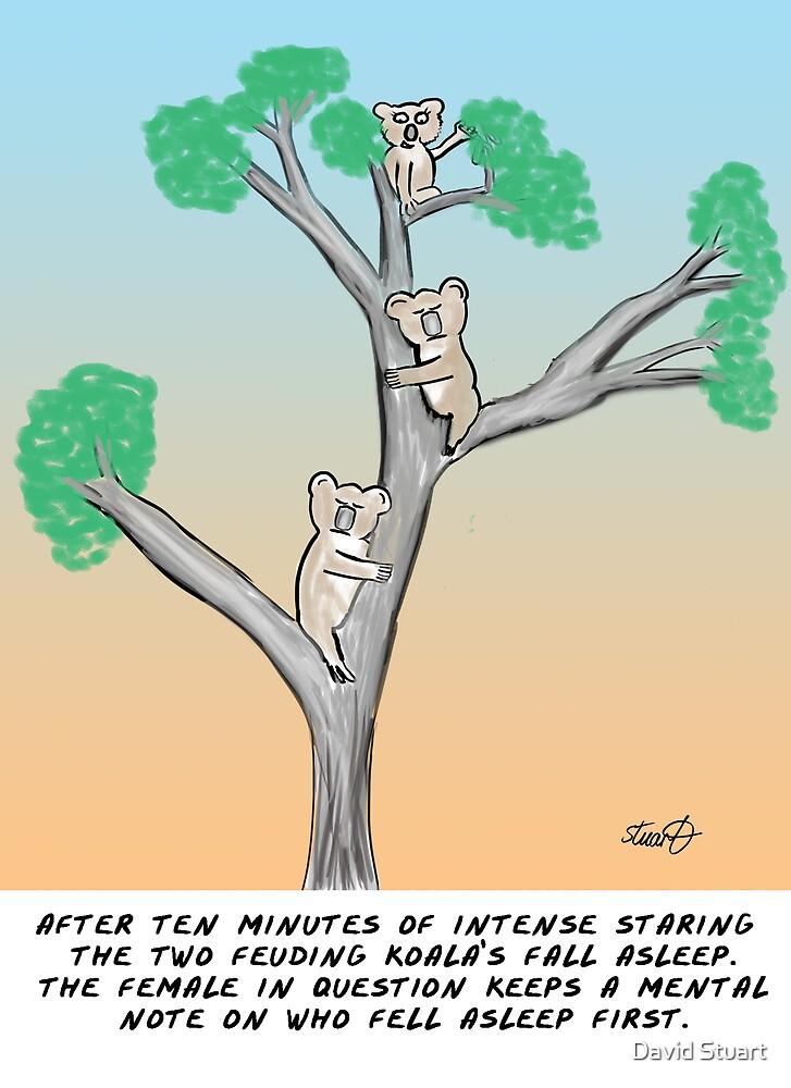 Koala Cartoon- The Mating Game by David Stuart