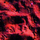 Earthen Tracks by monica98