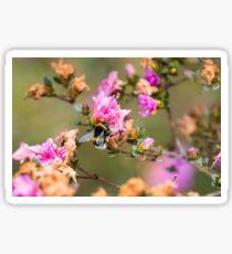 Little Bumblebee Sticker