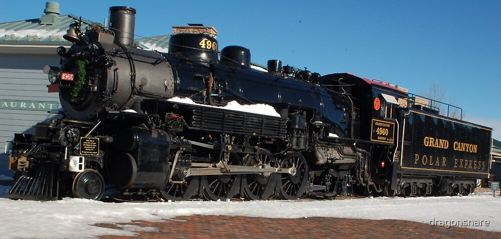 Polar Express 277views, 2 favorites, 8comments by dragonsnare