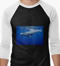 Humpback whale calf, Vava'u, Tonga Men's Baseball ¾ T-Shirt