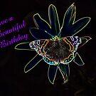 Beautiful Birthday by CardLady