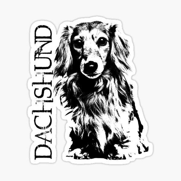 Longhaired Dachshund dog Sticker