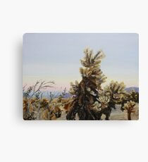 Cholla Cactus II Canvas Print