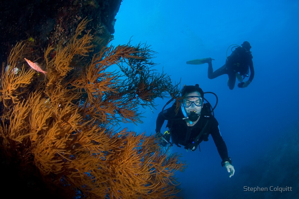 Happy diver by Stephen Colquitt