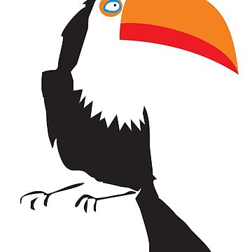 toucan by mmawson
