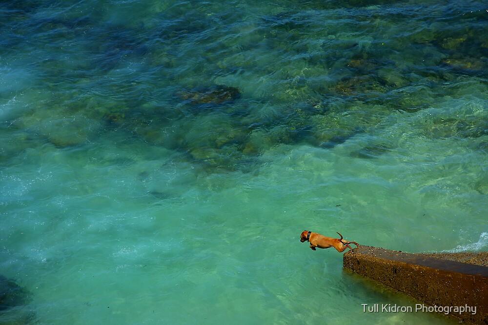 Go, Doggy! GO! by Tull Kidron Photography