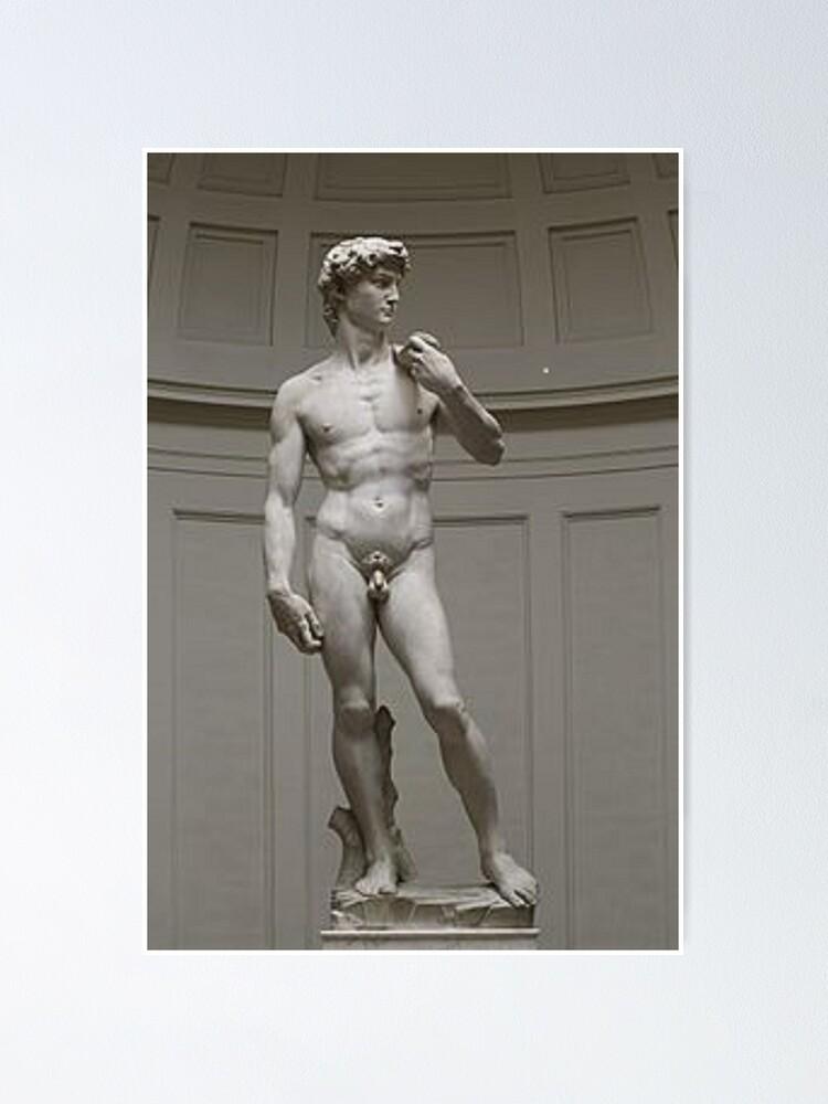 Alternate view of David by Michelangelo #David #Michelangelo #DavidbyMichelangelo #masterpiece Renaissance sculpture Poster