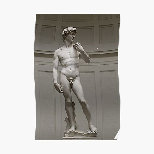 David by Michelangelo #David #Michelangelo #DavidbyMichelangelo #masterpiece Renaissance sculpture Poster