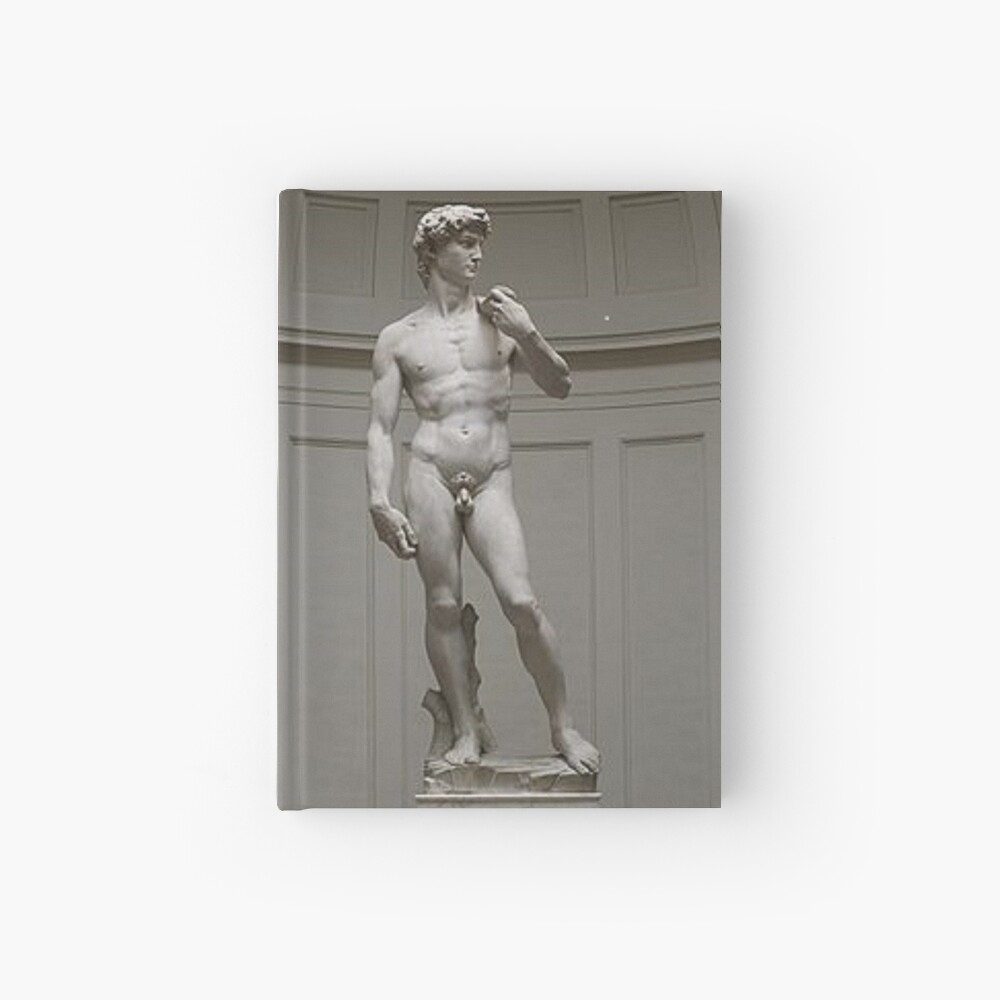 David by Michelangelo #David #Michelangelo #DavidbyMichelangelo #masterpiece Renaissance sculpture: Hardcover Journal