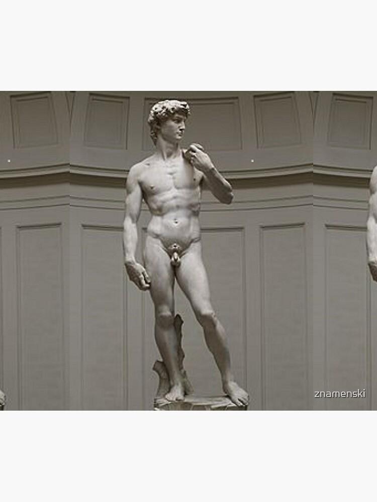 David by Michelangelo #David #Michelangelo #DavidbyMichelangelo #masterpiece Renaissance sculpture by znamenski