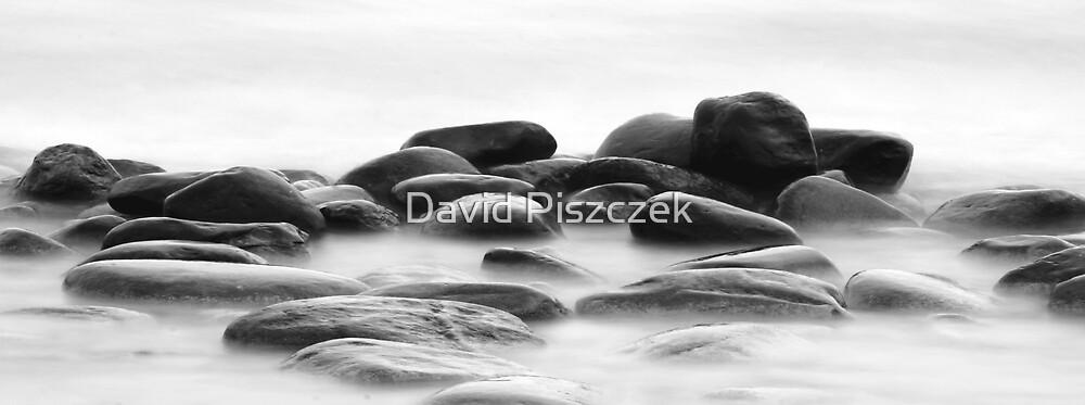 Rocks On Shoreline by David Piszczek
