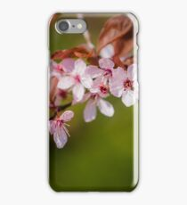 Pink Apple Blossom iPhone Case/Skin