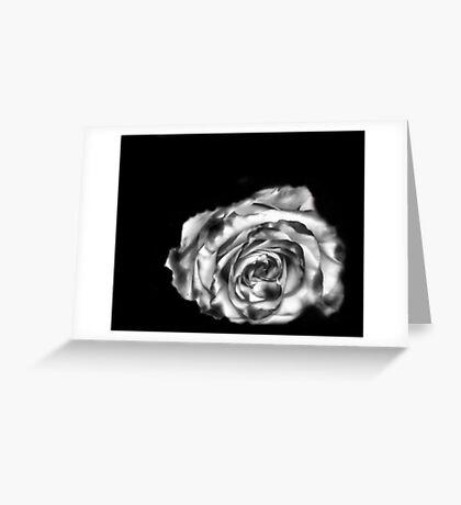 Dream Rose in B&W Greeting Card