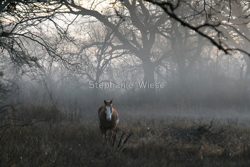 In the Midst by Stephanie  Wiese
