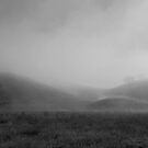 Serenity by NewDawnPhoto