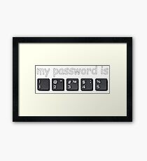 My password is 12345 Framed Print
