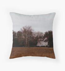 1700'S Throw Pillow