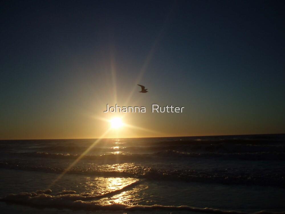 sunrise by Johanna  Rutter