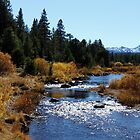 Mountain Stream by doubleheader
