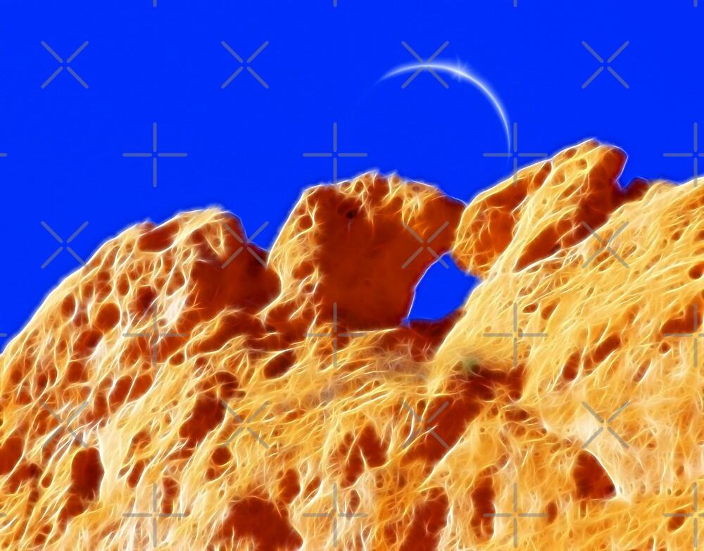 Kissing Camels Eclipse by Beverlytazangel