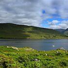 Killary Harbour by annalisa bianchetti
