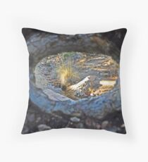 From inside The Tree  Throw Pillow