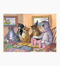 Cats at a sewing bee Photographic Print