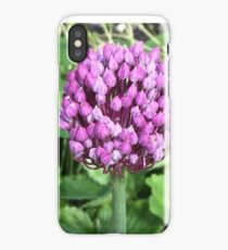 Purple leek flower iPhone Case/Skin