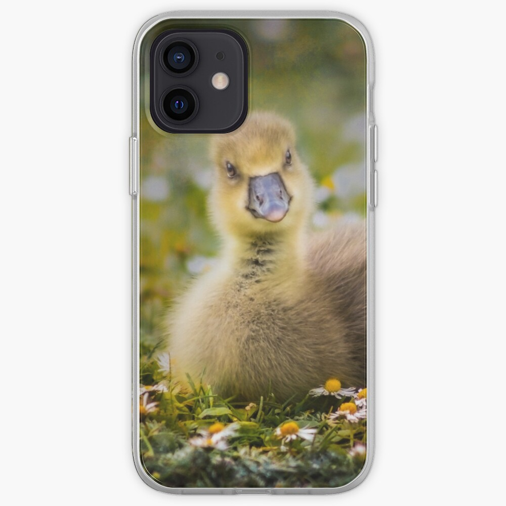 the quizzical gosling iPhone Case & Cover