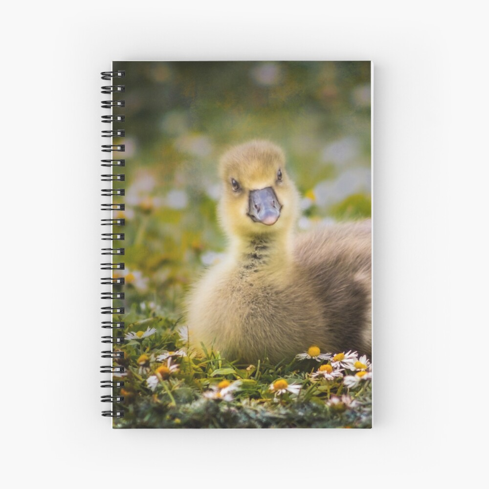 the quizzical gosling Spiral Notebook